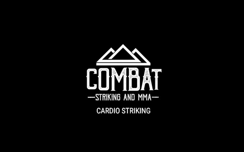 Cardio Striking Class and Sessions in Triple Crown Athletic LLC